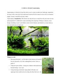 A Guide To Advanced Aquascaping   Mountains   Landscape Planted Tank Contest Aquarium Design Aquascape Awards How To Create Your First Aquascaping Love Pin By Marius Steenblock On Pinterest The Month September 2008 Pinheiro Manso Creating Nature Part 1 Inspiration A Beginners Guide To Aquaec Tropical Fish Style The Complete Brief Progressive Art Of 2013 Xl Pt2 Youtube Aquadesign Dutch Sytle Aquascape Best Images On Appartment Iwagumi Der Der Firma Dennerle Ist Da Aqua Nano