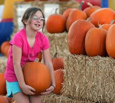 Pumpkin Patch Waco Tx by Visit The Moore Farms Pumpkin Patch This Halloween