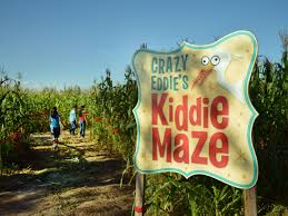 Mesilla Pumpkin Patch Las Cruces local corn mazes kick off fall fun