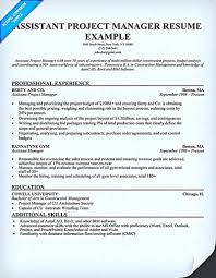 100 Assistant Project Manager Resume Construction Sample