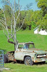 Could It Be..a Tree Growing Out Of An Old Truck?? Is It ... Asplundh Adds Propane Autogas Trucks To Its Fleet Roush Cleantech Tree Climbers Services Gerson 95 In H Lit Wooden Antique Hauling Christmas 1950 Chevy Cabover Tree Trimming Kenworth T680 Advantage Begin Transport 2017 Capitol Car Towing Heavy Truck Repair Cambridge Oh 74043900 The Guava Commercial Success Blog Expert Co Taps Just The Job Forestry Driver Youtube How Stay Safe In A Car Magazine Website Cranebothtrucks2 Davis Service Self Loading Grapple Mack Crews
