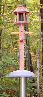 Bird Feeder Pole plans build your own Bird feeders