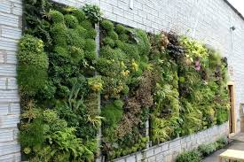 Indoor Vertical Vegetable Garden Planters