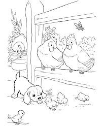Farm Animal Coloring Page Free Printable Baby Chicks Pages Featuring Hundreds Of Chick Sheets