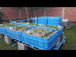 COMPLETE AQUAPONICS SET UP Start to Finish YouTube New Home
