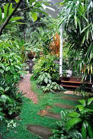 100 Bali Garden Ideas Small Tropical Plants For Terrariums Nese