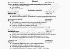Resume Examples Accounting Professional Summary