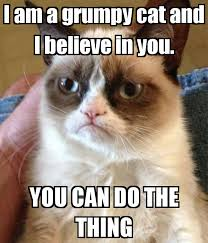 I Am A Grumpy Cat And Believe In You YOU CAN DO THE THING