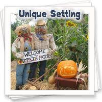 Live Oak Canyon Pumpkin Patch 2015 by 96 Best Yucaipa Images On Pinterest Redlands California Family