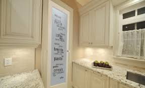 Top Frosted Glass Pantry Door About remodel Amazing Home Interior
