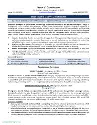 Resume Profile Examples For Project Management Unique Warehouse Sample Free Letter Templates Line