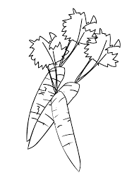 Carrot Coloring Pages 1