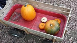 Pumpkin Patch Sioux Falls Sd by Pumpkin Biggest Food Junkie