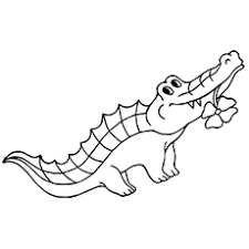 Alligator Coloring Pages Flower