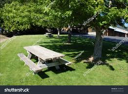 Picnic Table Shady Tree Oak Glen Stock Photo 13659391 - Shutterstock Summer Backyard Pnic 13 Free Table Plans In All Shapes And Sizes Prairie Style Pnic Outdoor Tables Pinterest Pnics Style Stock Photo Picture And Royalty Best Of Patio Bench Set Y6s4r Formabuonacom Octagon Simple Itructions Design Easy Ikkhanme Umbrella Home Ideas Collection We Go On Stock Image Image Of Benches Family 3049 Backyards Ergonomic With Ice Eliminate Mosquitoes In Your Before Lawn Doctor