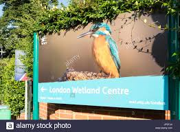 London Wetland Centre, Barnes, SW13, UK Stock Photo, Royalty Free ... Strada Restaurant In Barnes Sw13 Ldon United Kingdom Stock The Crescent Property For Sale Chestertons Mill Hill To Rent Riverside Photo Royalty Savills Burges Grove 8bg Riverview Gardens Welcome Richmond Upon Thames Sign Uk Elm Bank Commercial Rent 102 Church Road
