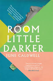 Also Full Of Humour And Exquisite Strangeness Are Two 2017s Best Short Story Collections June Caldwells Debut Room Little Darker An Outrageous