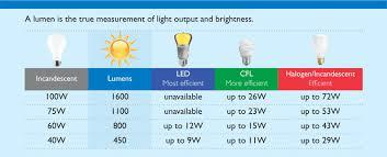 light bulb 100 watt light bulb lumens top design