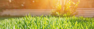 100 Davies Landscaping Contractors Cincinnati OH