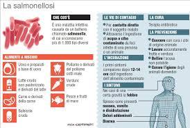 lactalis si e social caso lactalis cos è la salmonellosi infografica tgcom24