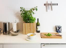 küchentipps kräuter in der wohnung ziehen faustmann