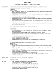 Download Collateral Operations Resume Sample As Image File