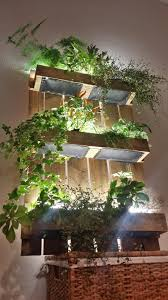 Indoor Hanging Pallet Garden