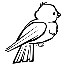 Printable Download Coloring Pages Bird Large Size