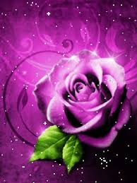 Beautiful Rose Pictures Animated