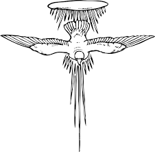 Dove Flying Wings Sky Symbol Freedom Feather