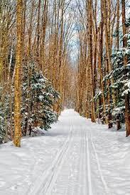 Christmas Tree Farm Near Lincoln Nh by Nestlenook Farm Jackson Nh Places I U0027d Like To Go Pinterest