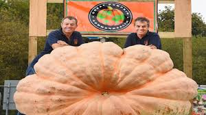 Worlds Heaviest Pumpkin Pie by Twin Brothers Broken Their Record For Heaviest Pumpkin Ever