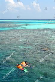 100 Reethi Rah Resort In Maldives Snorkel Sailing Trips Popular One Only Editorial