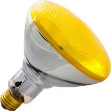 outdoor bug light bulbs meideas