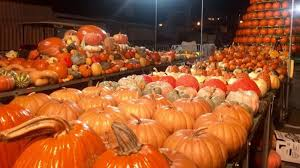 Circleville Pumpkin Festival by Top Spots Where To Get Central Ohio U0027s Best Pumpkin Treats