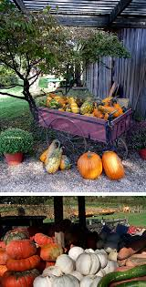 Apple And Pumpkin Picking Maryland by Locally Grown Vegetables Queen Anne Farm U0026 Pumpkin Patch Fresh