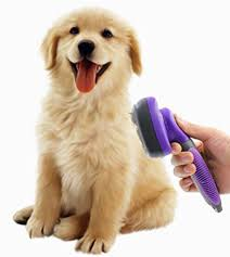 Dog Hair Shedding Blade by Dog Grooming Supplies The Happy Puppy Site