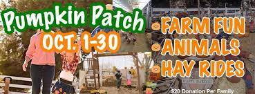 Pumpkin Patch Mobile Al 2015 by Pumpkin Patch At The Mckee Ranch Home Facebook