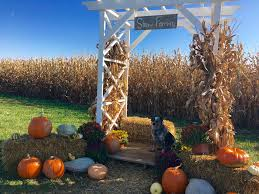Southern Ohio Pumpkin Patches by 14 Pick Your Own Pumpkin Patches In The Tri State Cincy Weekend