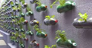 11 Clever Uses For Plastic Bottles In Your Garden