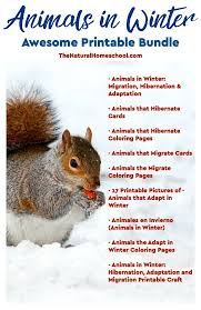 Animals In Winter Awesome Printable Bundle