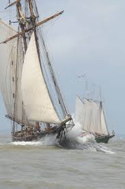Hms Bounty Tall Ship Sinking by 97 Best Age Of Sail And Tall Mast Ships Images On Pinterest
