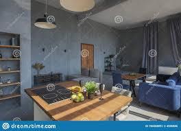 Studio Apartment Kitchen Ideas Modern Minimalistic Gray Loft Style Studio Apartment