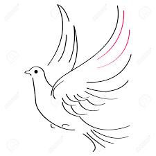 Vector illustration of flying dove on white background Stock Vector
