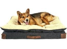 pooch planet dog beds korrectkritterscom