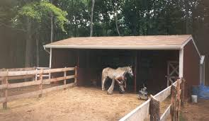Metal Loafing Shed Kits by Pole Barn Kit Stall Building Frame 544 Portable Barn Horse Barn