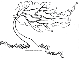 Trace Able For The Rainbow Willow Tree On Youtube With Art Sherpa