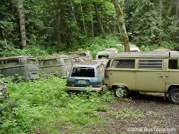 Volkswagen Wrecking Yard With Group Of VW Bay Window Bus Westy Campers