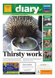 Porcupine Eating Pumpkin And Talking by Warrandyte Diary February 2016 By Warrandytediary Issuu