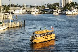 Top Things To Do In Fort Lauderdale: The Best Fort Lauderdale ... Top Things To Do In Fort Lauderdale The Best Thursdays The Restaurant French Cuisine 30 Best Fl Family Hotels Kid Friendly 25 Trending Lauderdale Ideas On Pinterest Florida Fort Wwwfortlauderdaletoursnet W Hotel Oystercom Review Photos Ft Beachfront Amenities Spa Italian Restaurants Sheraton Suites Beach Cafe Ding Bamboo Tiki Bar Gallery American Restaurant Casablanca 954 7643500